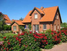 Ostsee-Ferienhaus Ostseetraum mit Kamin, Sauna und WLAN in Brasilien