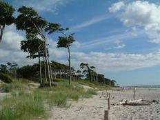 Ferienwohnung an der Ostsee, vor Fischland Zingst Darß, in Pruchten in Pruchten