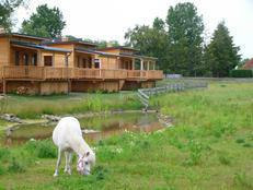 Horse Lake Ranch in Neuendorf (Saaler Bodden)