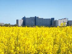 Ferienwohnung im Ferienpark mit Ostsee-Panoramablick in Heiligenhafen